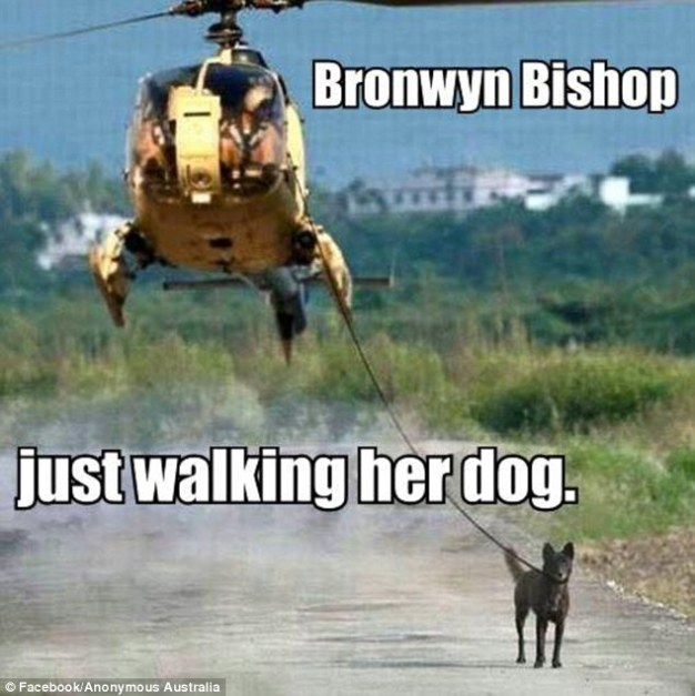 Bronwyn Bishop walking the dog