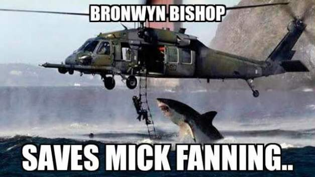 Bronwyn Bishop saves Mick Fanning