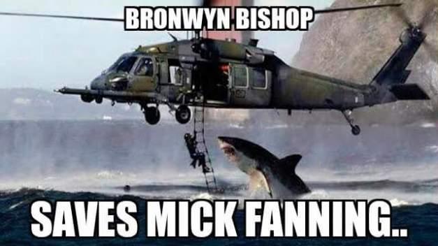 Bronwyn Bishop saves Mick Fanning