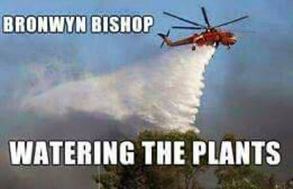 Bronwyn Bishop watering the plants